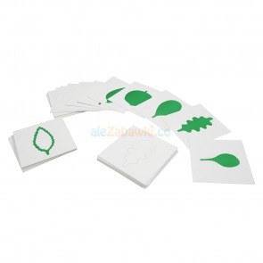 Karty do komody botanicznej - pomoce Montessori